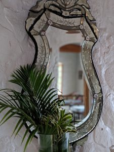 A plant in front of a hanging mirror