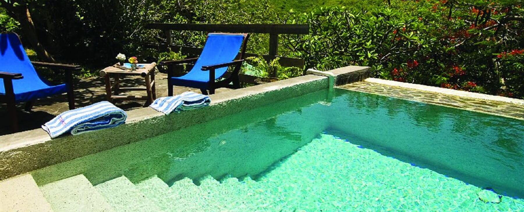 French House Plunge Pool