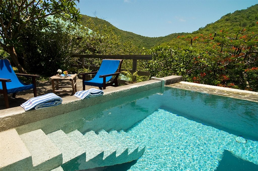 Plunge Pool at French House